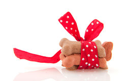 Surprise for dog. Surprise bones with ribbon and bow for the dog Royalty Free Stock Images