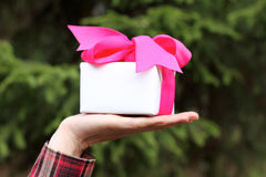 Surprise gift Stock Image