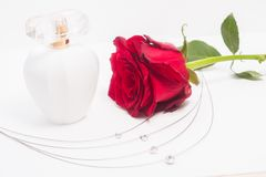 A surprise gift for a woman. Cliche gift for a woman, a red rose and an expensive perfume Stock Images