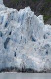 Surprise Glacier 3 Stock Photo