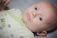 Surprised Baby Royalty Free Stock Photo