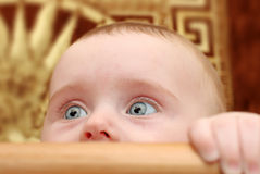 Surprised Baby Closeup Royalty Free Stock Images