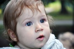 Surprised blue-eyed child portrait outdoors royalty free stock photo