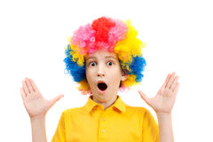 Surprised boy in the bright multi-colored wig. Isolated on white background Royalty Free Stock Photo