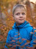 Surprised boy in autumn Park stock photo