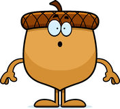 Surprised Cartoon Acorn Royalty Free Stock Images