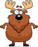 Surprised Cartoon Moose Royalty Free Stock Photos