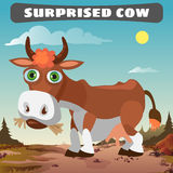 Surprised cow, character from wild West series Royalty Free Stock Photos