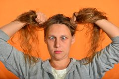 Surprised and crazy girl holding her hair with her hands on a yellow background royalty free stock image
