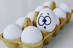 Surprised egg in a carton box royalty free stock photos