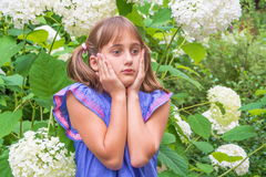 Surprised, frightened little girl Royalty Free Stock Image