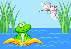 A surprised frog sits in a water lily and looks at a huge mosquito. Stock Image