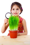 Girl with magnifier and grass Royalty Free Stock Image
