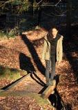 Surprised girl walking on bridge Royalty Free Stock Image