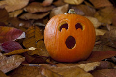 Surprised Jack-O-Lantern With Leaves Royalty Free Stock Photos