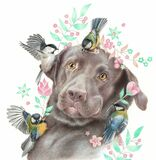 Surprised Labrador and little birds. Realistic drawing of a dog and titmice isolated on a white background. Sketch colored pencils. Surprised Labrador and little