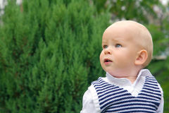 Surprised little boy looking up Stock Photography