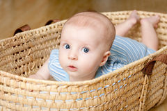 Surprised Little boy lying in wicker basket Royalty Free Stock Photo