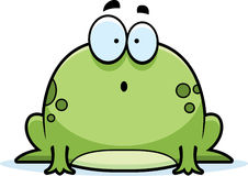 Surprised Little Frog Royalty Free Stock Photos