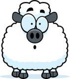 Surprised Little Lamb Royalty Free Stock Photo