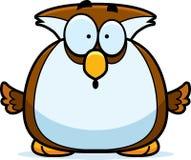 Surprised Little Owl Stock Photos