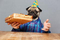 Surprised man with pug dog head holding present box Royalty Free Stock Photography