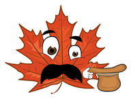 Surprised mapple leaf cartoon Stock Images