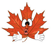 Surprised mapple leaf cartoon Stock Photos