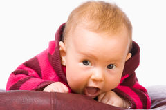 Surprised Newborn Face Royalty Free Stock Images