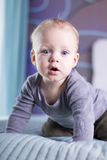 Surprised open mouthed baby boy looking at camera. Blue-eyed infant kid indoor. Stock Photography