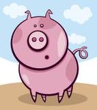 Surprised pig. Cartoon  illustration of surprised pig Stock Images