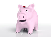Surprised piggy bank with ladybug on head Royalty Free Stock Photography