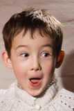 Surprised and pleased boy Royalty Free Stock Image