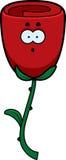 Surprised Rose Stock Image