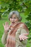 Surprised senior woman Royalty Free Stock Image