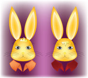 Surprised and serious rabbit heads Stock Photo