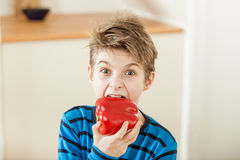 Surprised young boy biting into a red bell pepper Stock Photos