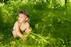 Surprised young small boy discovering nature Stock Photo