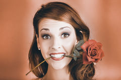 Surprised Young Woman Getting Valentine Flower Royalty Free Stock Images