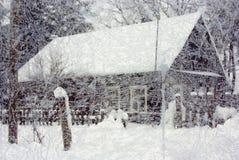 Surprises de l'hiver 2010 Photo libre de droits