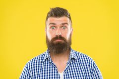 Surprising news. Man bearded hipster wondering face yellow background close up. Guy surprised face expression. Hipster. With beard and mustache emotional stock images