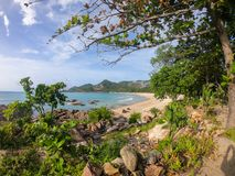 Surprisingly beautiful nature of Thailand. Samui Island stock image