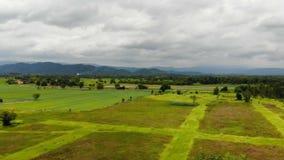 Surr skjutit sceniskt landskap för flyg- sikt av den åkerbruka lantgården i torr bygd stock video