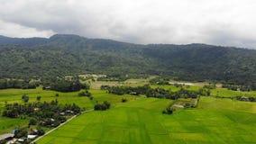 Surr skjutit sceniskt landskap för flyg- sikt av den åkerbruka lantgården i torr bygd lager videofilmer