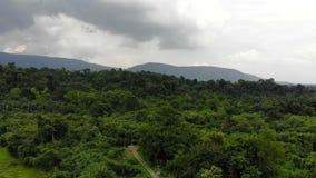 Surr skjutit sceniskt landskap för flyg- sikt av naturberget och skogstället i Thailand stock video