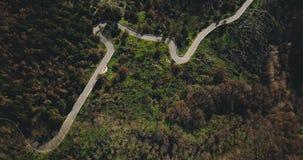 Surr som flyger över den slingriga vägen för fantastiskt berg Den flyg- bästa sikten sköt av fridsamma skogträd och den slingrand stock video