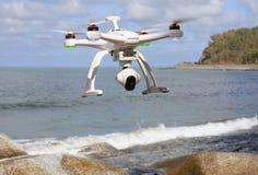 Surr som flyger över havet Arkivbilder