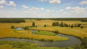 Surr som flyger framåtriktat över den slingrande floden Antennskott av det härliga europeiska lantliga landskapet Ljust sommarfäl stock video