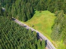 Surra sikten av en väg och en skog i Vrancea County, Rumänien royaltyfri bild
