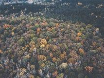 Surrbild av en mångfärgad skog i den sydöstliga Förenta staterna med nedgånglövverk arkivfoto